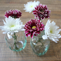 Mia set of 3 recycled glass vases by LSA, containing white and purple chrysanthemum flowers.