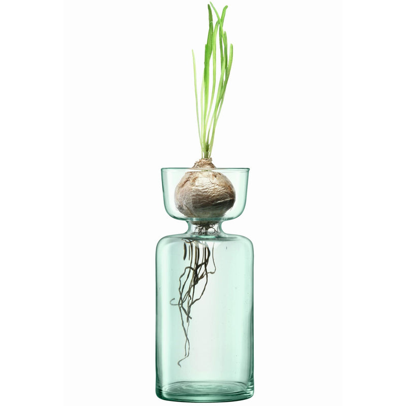 products/cq12-g1582-lsa-eden-project-bulb-planter-recycled-clear.jpg
