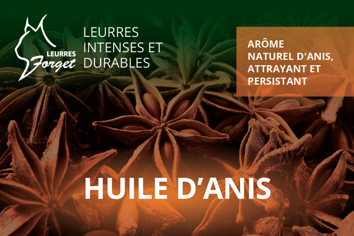 Huile d'anis