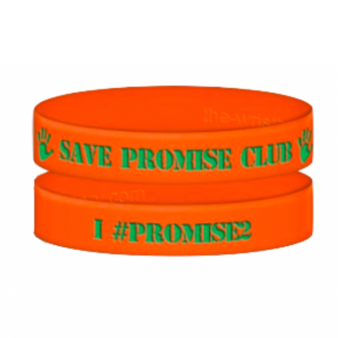 100 SAVE Promise Club Wristbands