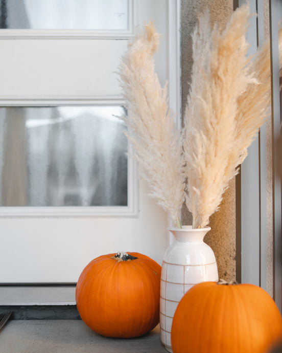 How to Use Pampas Grass for the Fall Season