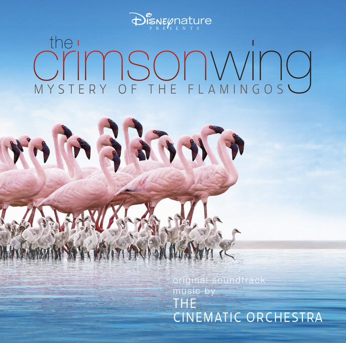 Cinematic Orchestra with the London Metropolitan Orchestra -The Crimson Wing - Mystery of The Flamingoes