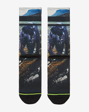 Load image into Gallery viewer, FLINCK sokken black panther crossfit sports socks men women back