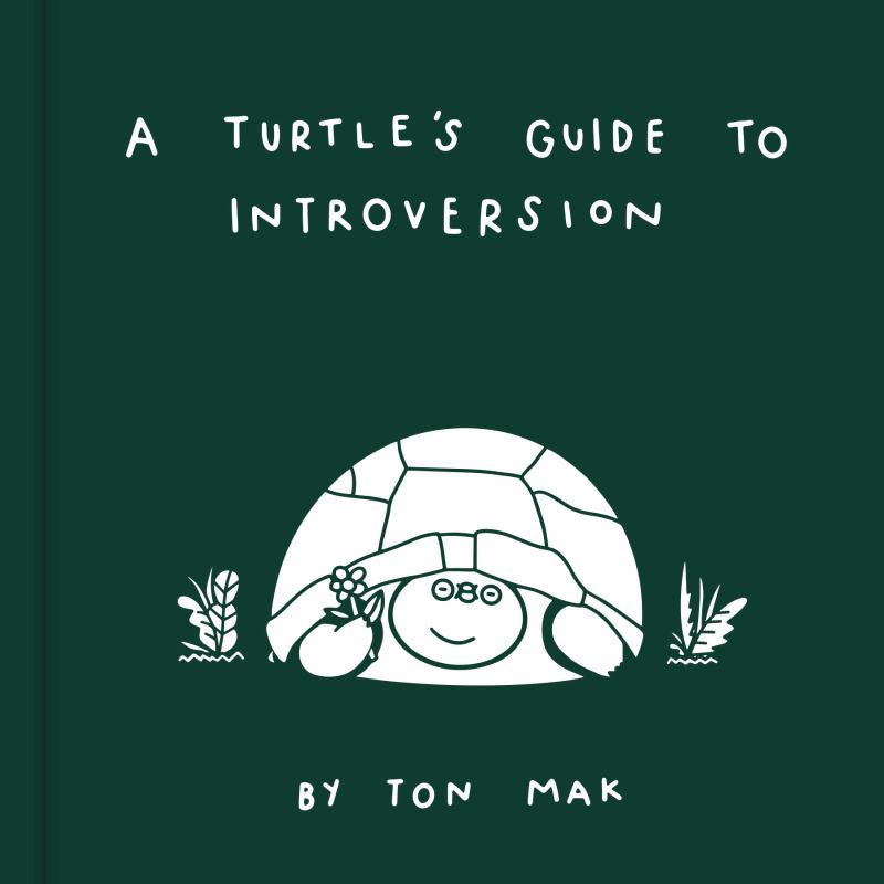 A Turtles Guide to Introversion