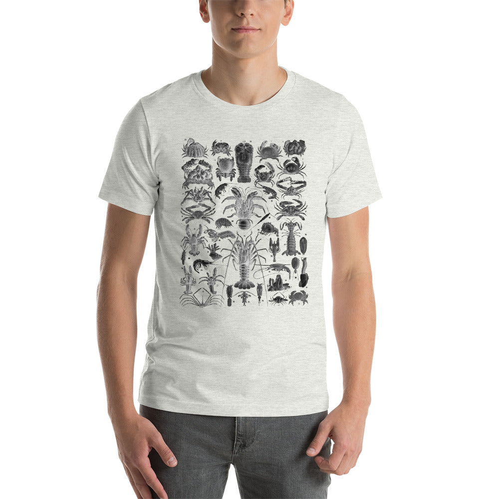 Illustration of different species of crustaceans/shellfish, Vintage style drawing on a soft cotton t-shirt