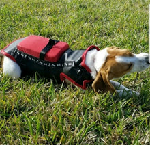 Load image into Gallery viewer, Copy of Hawk and Coyote Deterrent Vest for Dogs (WITHOUT SPIKES) - LEVEL 4.8 PROTECTION