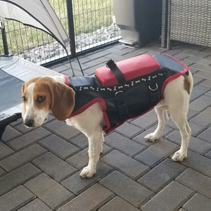 Custom Fit-Hawk and Coyote Deterrent Vest for Dogs- LEVEL 5.0 PROTECTION- Free Face Cover w/ Vest