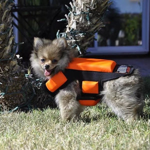 Hawk and Coyote Deterrent Vest for Pets (WITHOUT SPIKES) LEVEL 4.0 PROTECTION