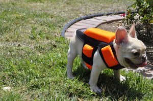 5 Pads w/ Spikes -Hawk and Coyote Deterrent Vest For Dogs- LEVEL 5.0 PROTECTION- Free Face Cover w/ Vest