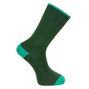 Conifer Green Socks - Lightweight