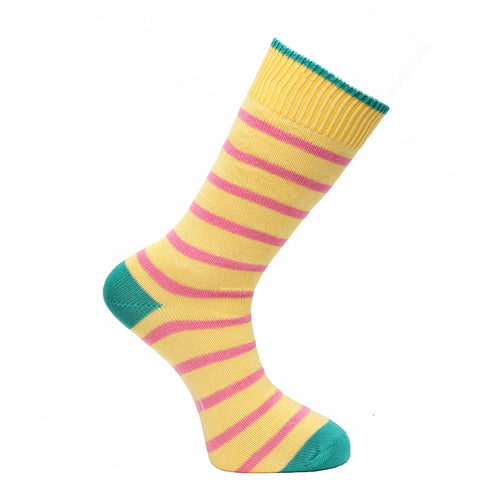 Primula Stripe Socks - Lightweight