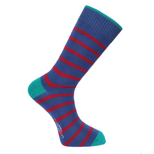 Oxford Blue Stripe Socks - Lightweight