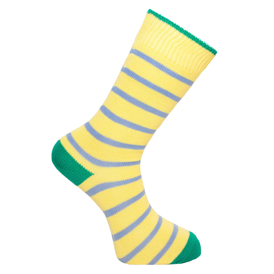 Primula and Blue Stripe Socks - Lightweight