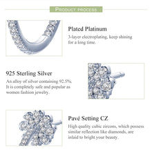 Load image into Gallery viewer, DELPHINE 925 Sterling Silver Earrings