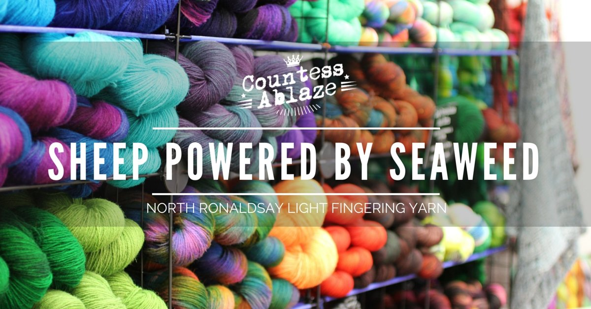 Yarn Profile :  The Rt. Hon. Ronaldsay - North Ronaldsay wool Countess Ablaze