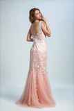 2021 Bicolor Prom Dresses Bateau Mermaid Low Back Sweep/Brush Train Tulle With Ivory Applique