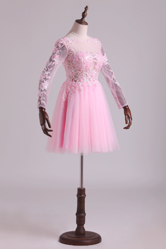 2019 Bateau Homecoming Dresses A Line With Embroidery & Beads Tulle Mini