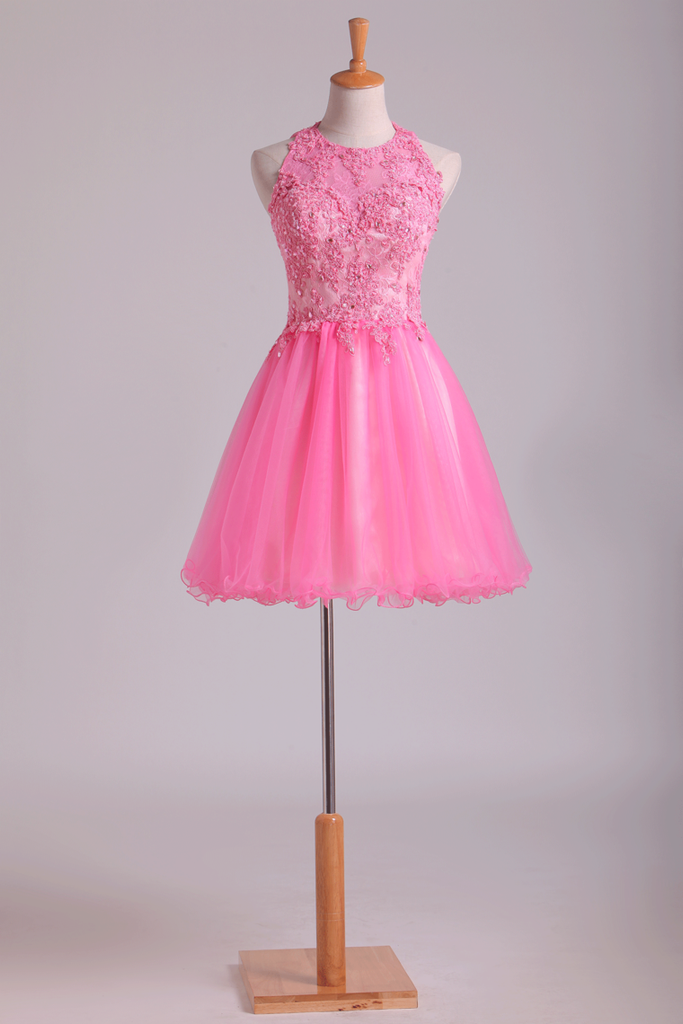 Lovely Homecoming Dresses Scoop A Line Short Tulle With Applique