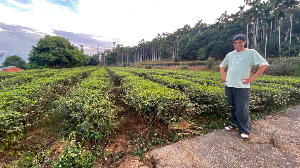 Natural tea farming pioneer standing next to his plot of tea