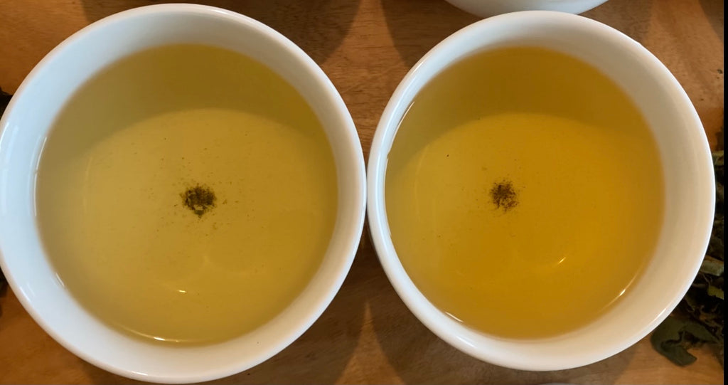 Shan Lin Xi High Mountain Oolong spring and summer crops brewed side by sidee