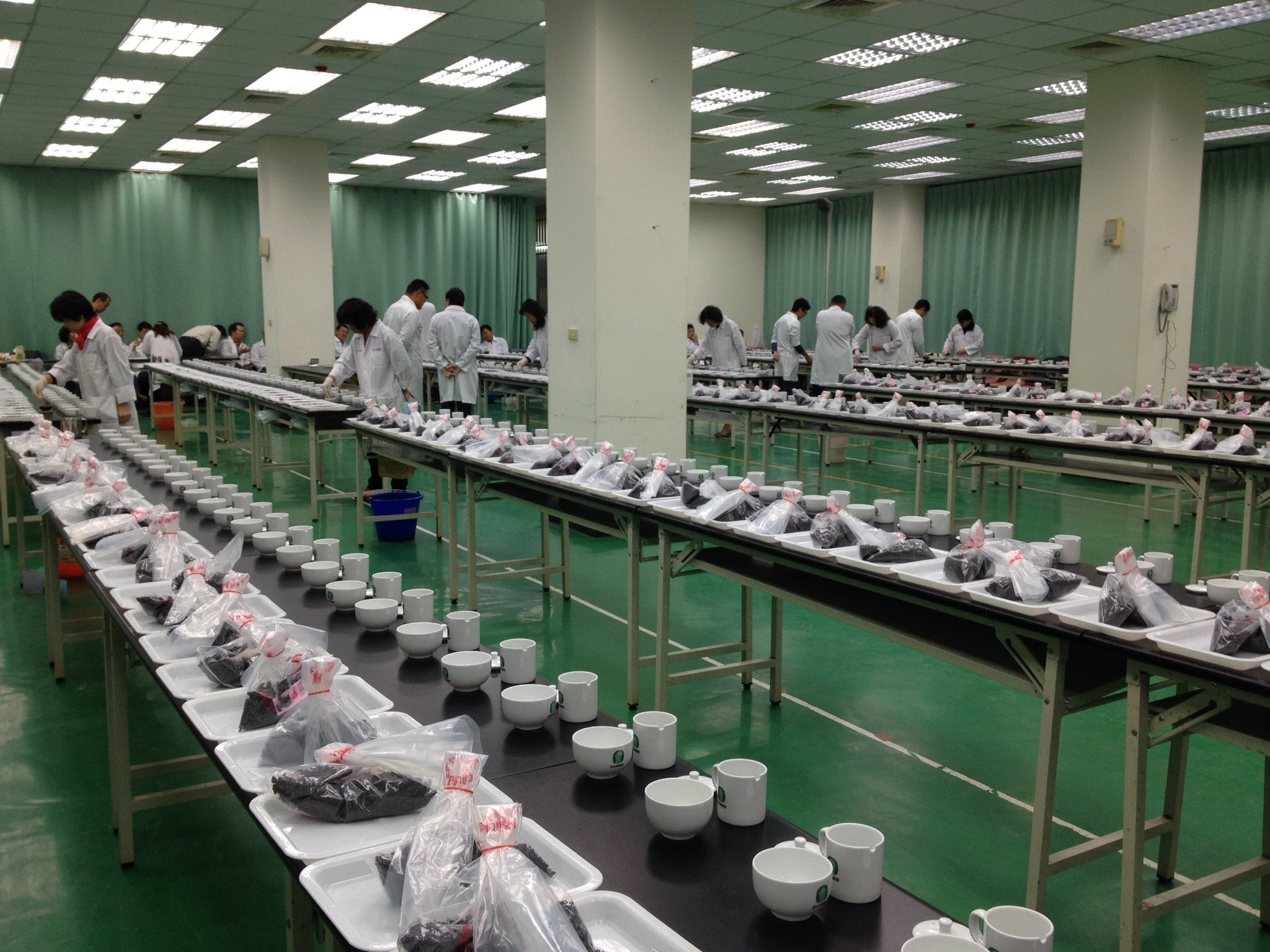 Primary stage of tea judging at the Lugu Farmers' Association Dong Ding Oolong Tea Competition