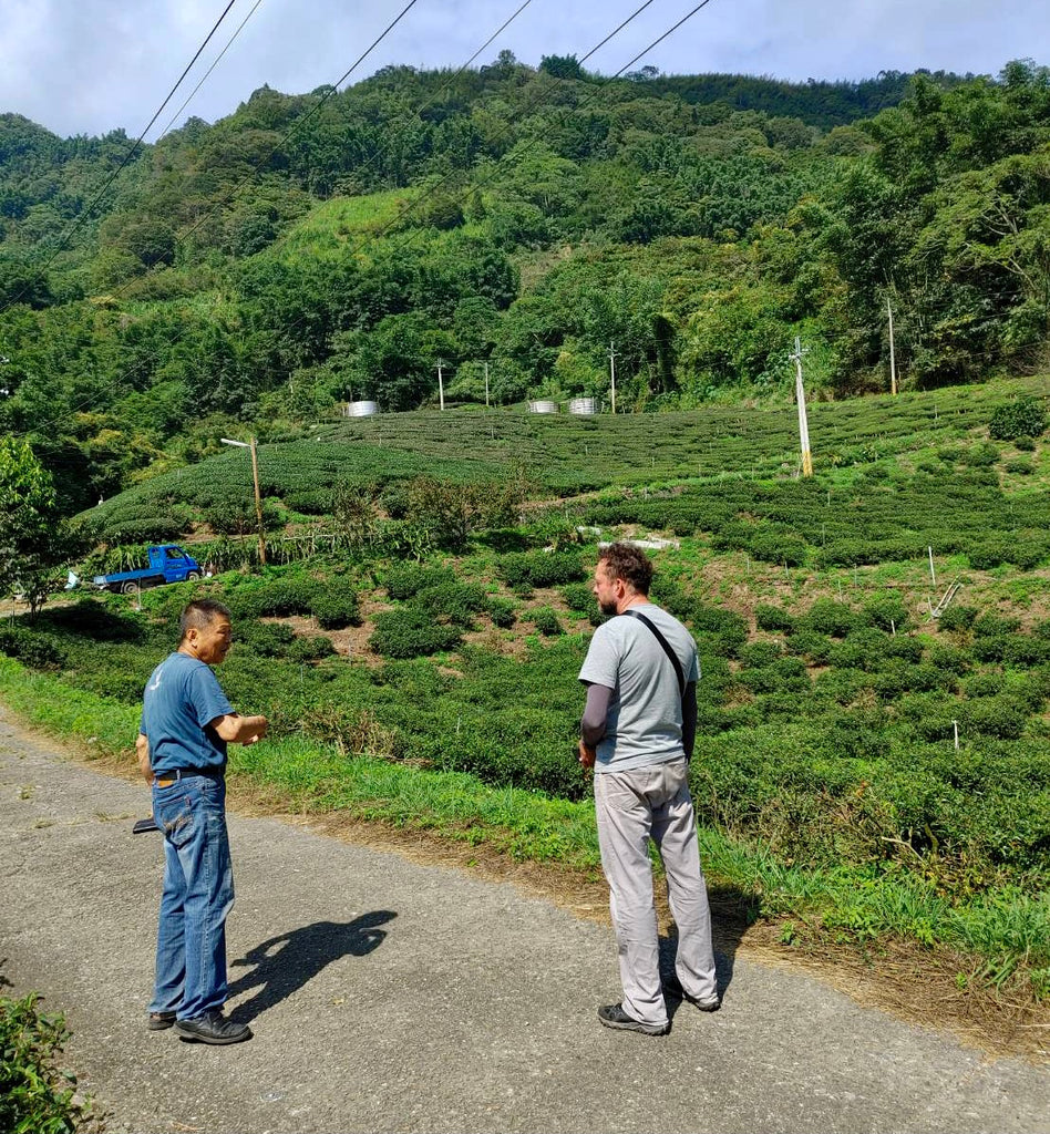Eco-Cha on a remote high Mountain organic  tea farm with a living legend of a tea farming pioneer