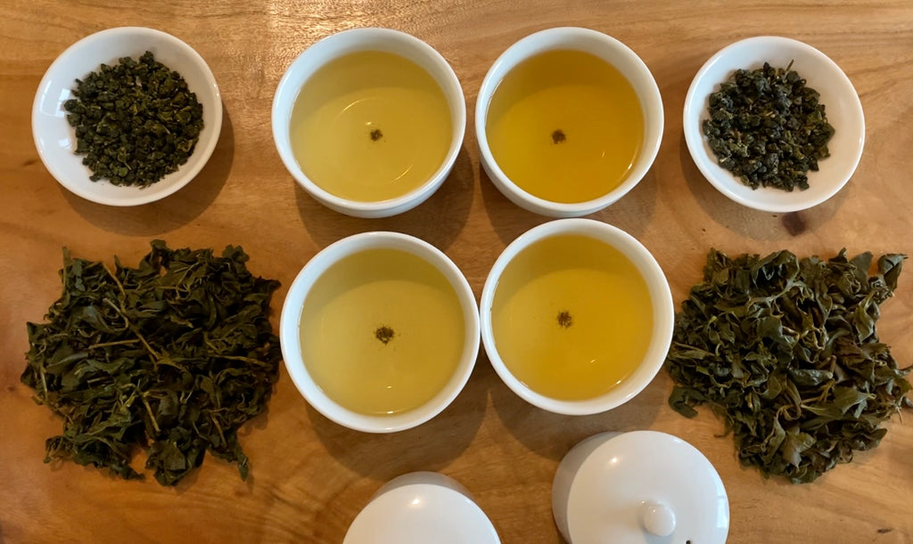 Shan Lin Xi High Mountain Oolong spring and summer harvest comparison