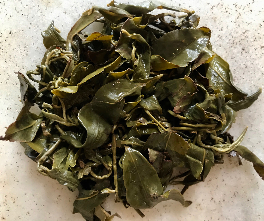 Brewed roasted leafhopper tea leaves
