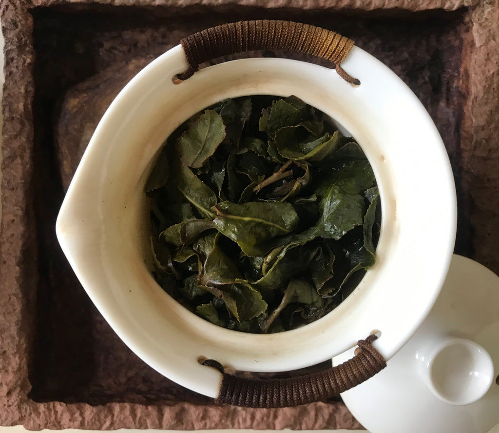 Gaiwan teapot brewing Dong Pian Jade Oolong Tea leaves