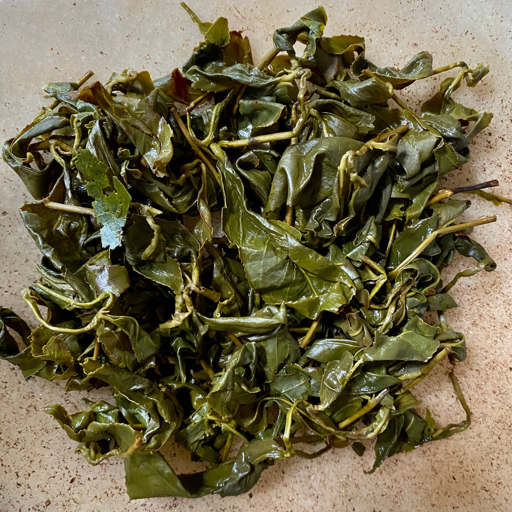 Shan Lin Xi High Mountain Oolong fall harvest 2020 brewed tea leaves