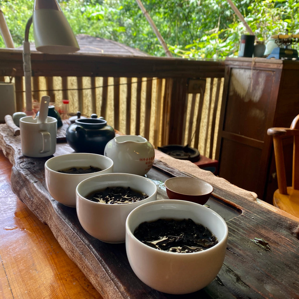Traditional Tie Guan Yin Oolong Tea Tasting
