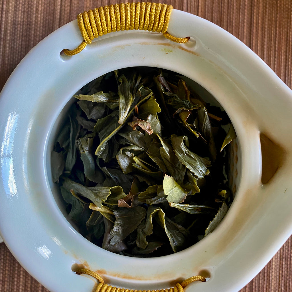Wenshan Baozhong brewed leaves in a gaiwan teapot