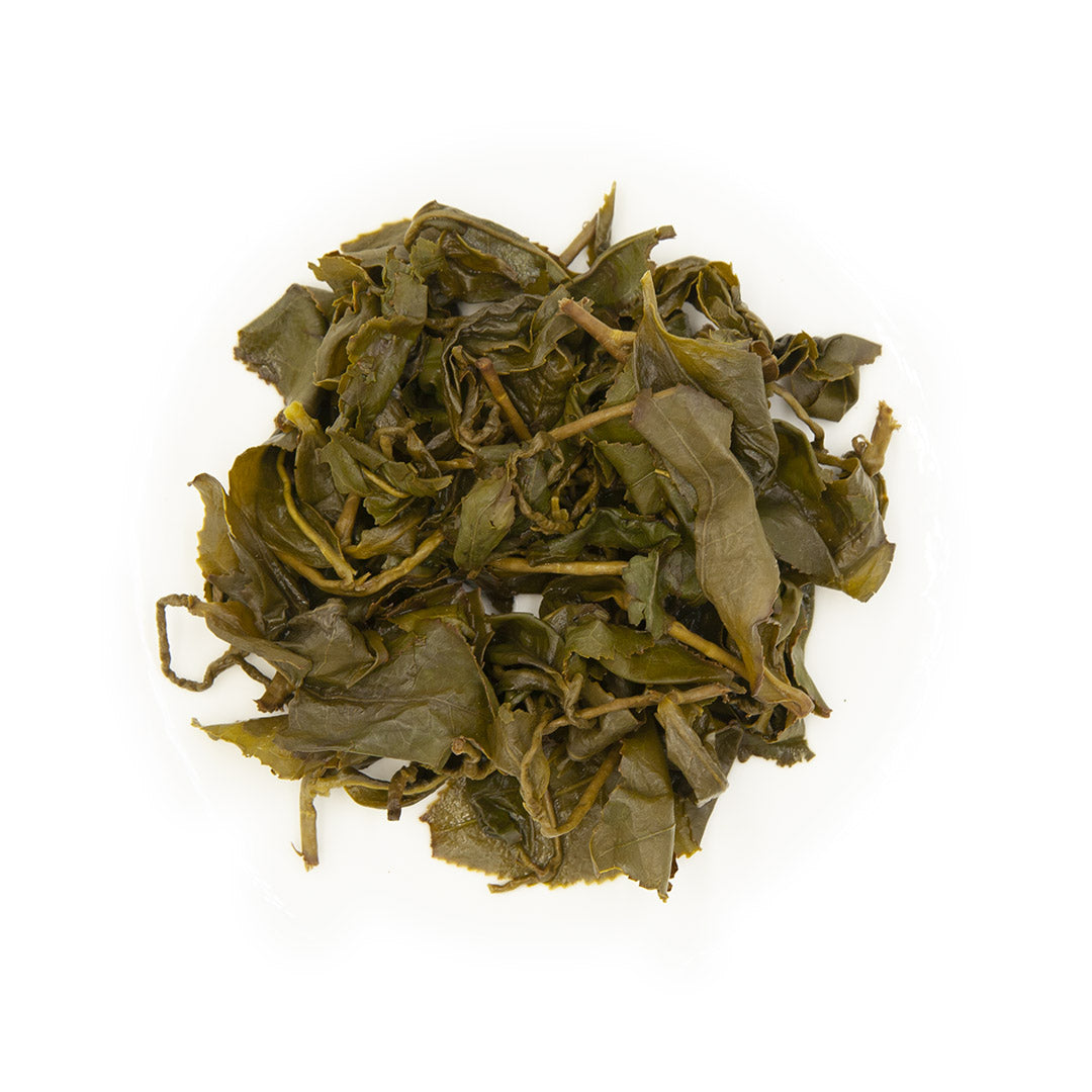 Alishan High Mountain Jin Xuan Oolong Tea, wet leaves