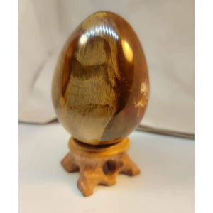 NEW!! Petrified Wood Crystal Egg
