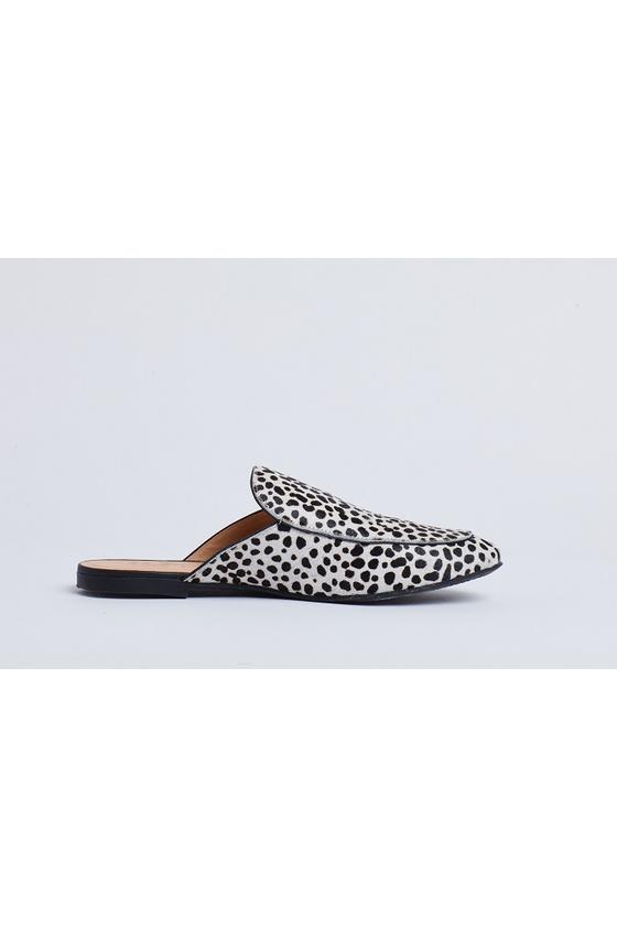 Veronica Slide Snow Leopard