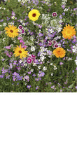 Load image into Gallery viewer, Fragrant Flower Scatter Garden - Edwina Alexis