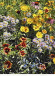 Load image into Gallery viewer, Honeybee Scatter Garden - Edwina Alexis