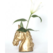 Load image into Gallery viewer, Gold Horsehead Vase - Edwina Alexis