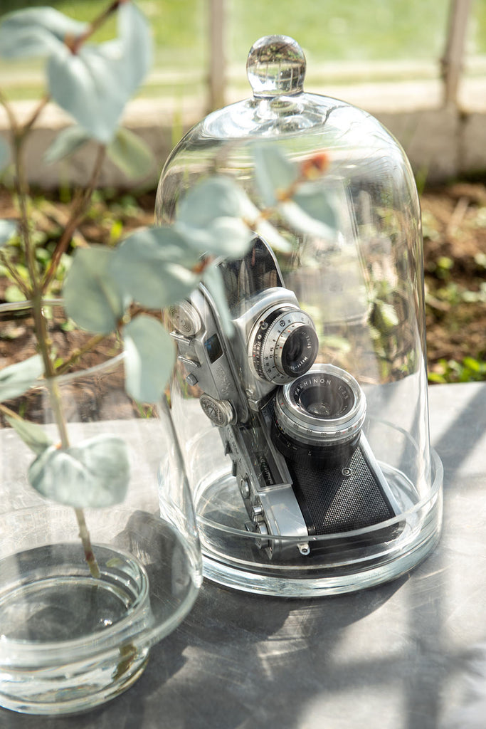 Bell Jar with Glass Saucer