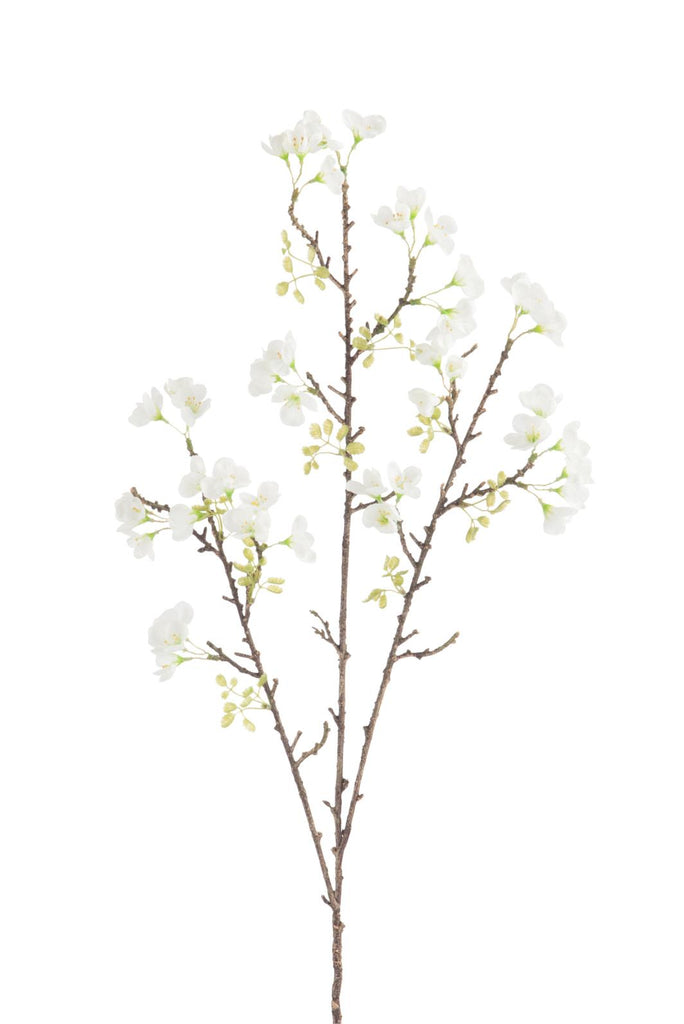 Cherry Branch Blossom Tree - White
