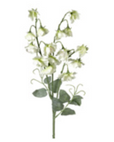 SWEET PEA SPRAY White