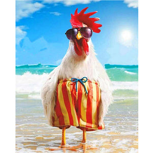 Chook on the beach