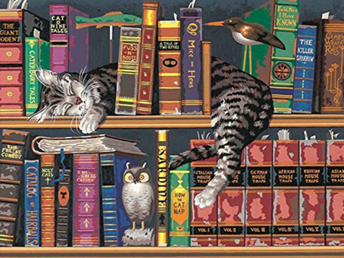 Lazy Cat Library