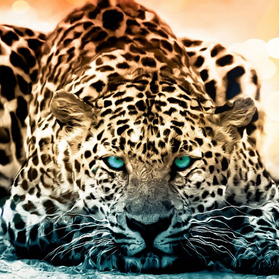 Leopard with green eyes