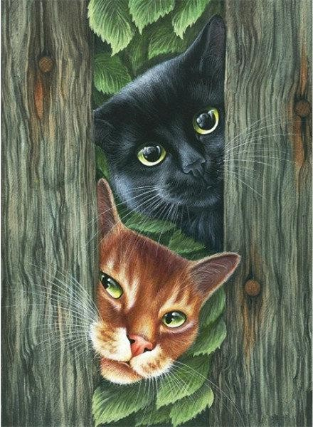 Cats in the woods