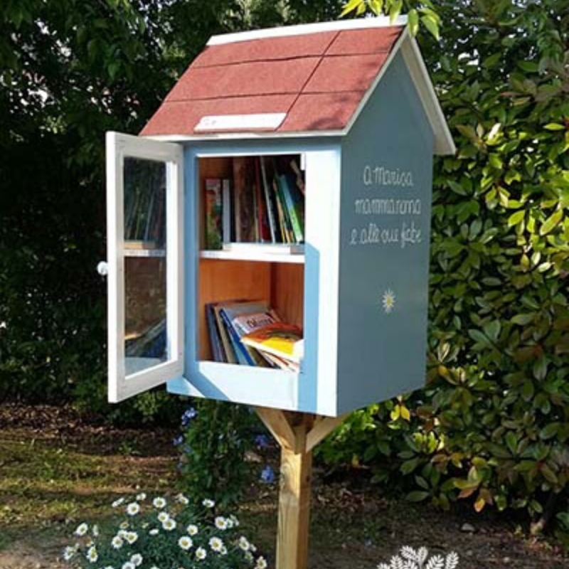 February's Pier Partner: Little Free Libraries