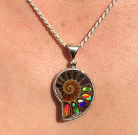 Ammonite Inlaid Ammolite Rainbow Fire Fossil Slice Sterling Silver Pendant