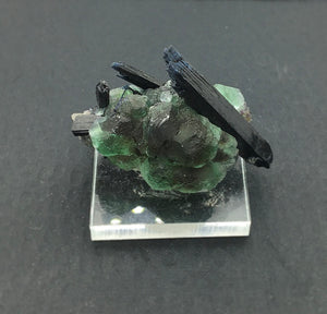 Fluorite Green Dodecahedra with Schorl Tourmaline Crystal Cluster Mounted Miniature Mineral Specimen (Erongo, Namibia)