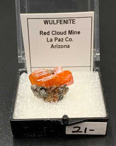 Wulfenite #8 (Red Cloud Mine, Arizona, USA)