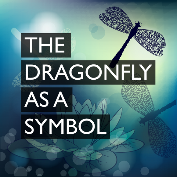 The Dragonfly as a Symbol in Kathleen's Transition